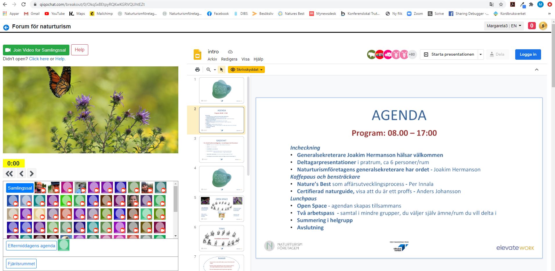 Qiqochat på Forum 2020